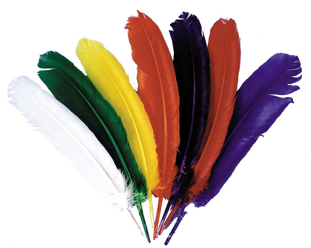 Ensemble de plumes
